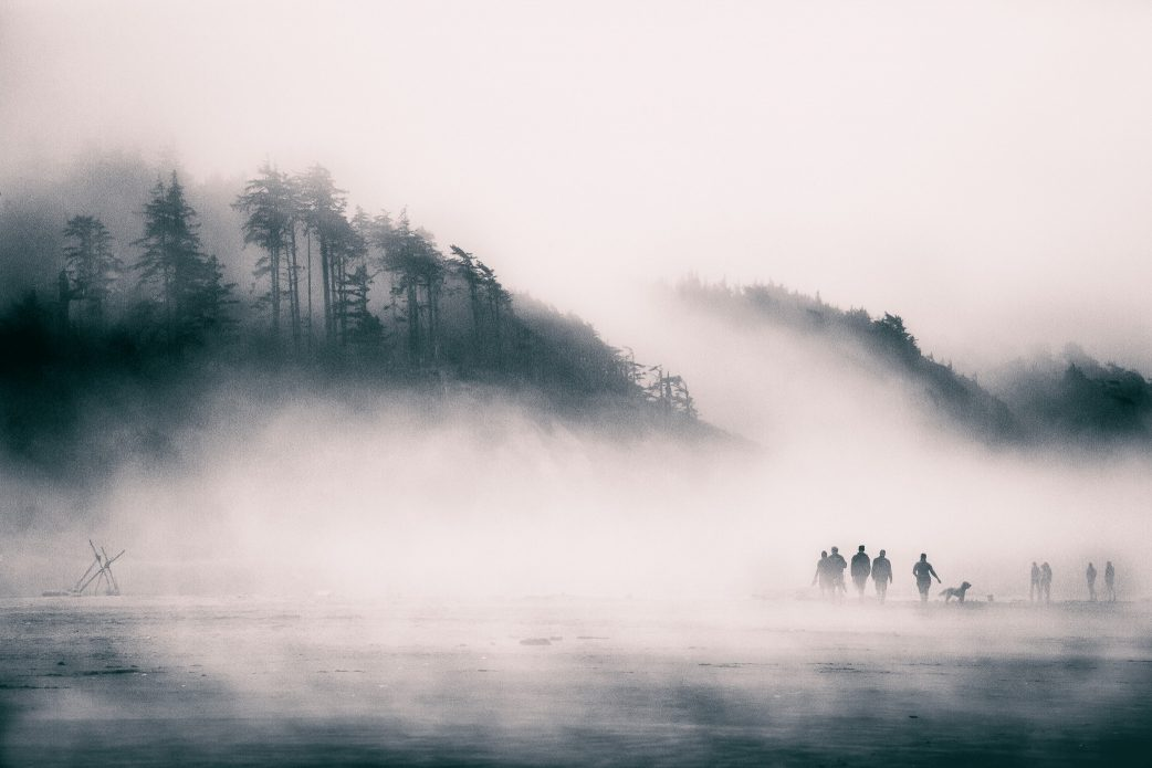 Fog rolls over the trees, silhouetting a group of people walking their dog along the beach.